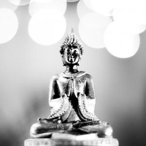 Bouddha dans Bonjour bouddha-300x300